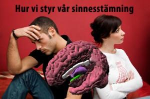 Att kunna tämja hjärnans amygdala är en av många nycklar när vi hanterar oss själva och andra.