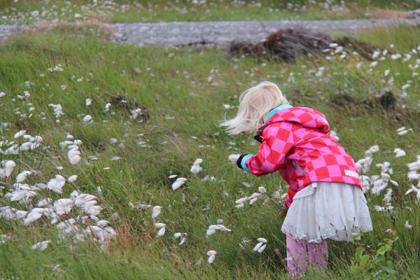 Förunderliga blommor studeras av vackraste systerdottern.
