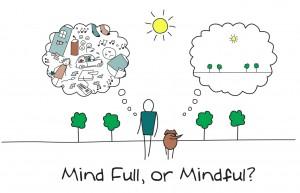 När det gäller mindfulness har djur ett övertag på människan. Vårt medvetande har förmågan att tänka framåt och bakåt i tiden med allt vad det innebär. För en hund gestaltar sig tillvaron exakt som den ser ut här och nu.